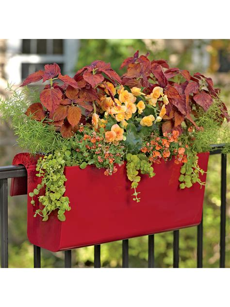 self watering wall planters viva self watering hanging basket hanging flower baskets