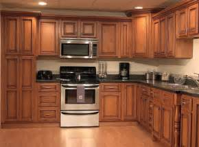 Pictures Of Kitchen Cabinet Doors by Wood Kitchen Cabinet Doors Home Interiors