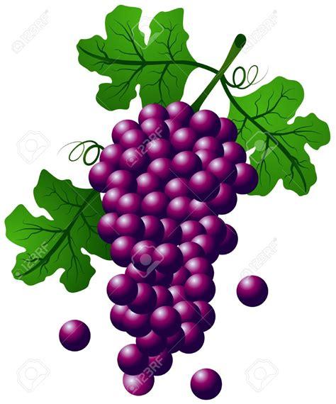 grape color colors clipart grape pencil and in color colors clipart