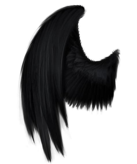 wing black black wing png by starscoldnight deviantart on