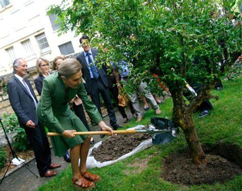 Comment Planter Un Grenadier by Quelques Liens Utiles