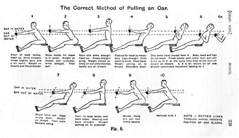 rowing machine diagram rowing technique nelson oars