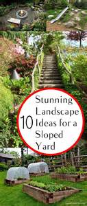 what to do with a sloped backyard 25 best ideas about sloped yard on sloped