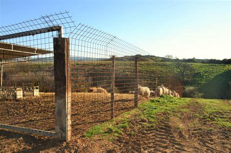 recinzioni giardino rete metallica recinzione recinzione terreno maprocol
