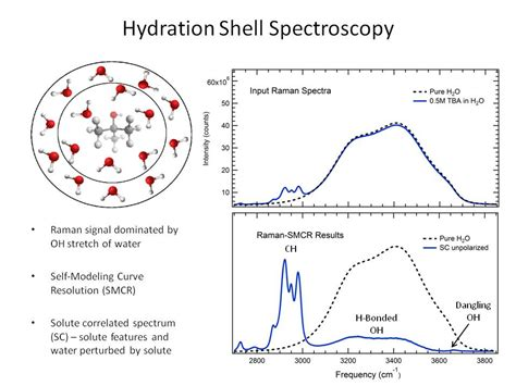a hydration shell ion solvation shell driverlayer search engine