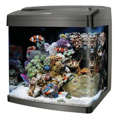 aquascape aquarium supplies 25 best ideas about 29 gallon aquarium on pinterest