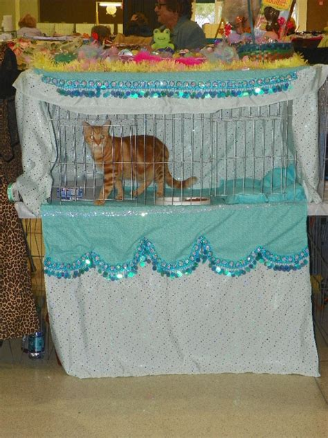cat show drapes cage curtains kitakiss burmese bombay catterycfa