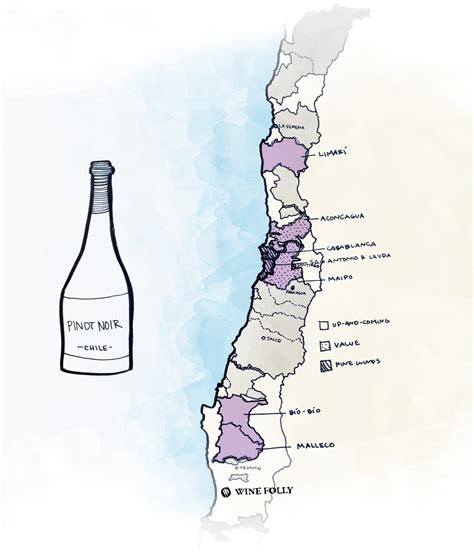 best wine regions the best wines to try from chile wine folly
