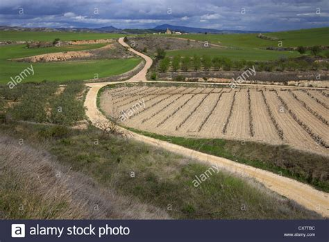 camino de santiago trail camino de santiago trail stock photos camino de santiago