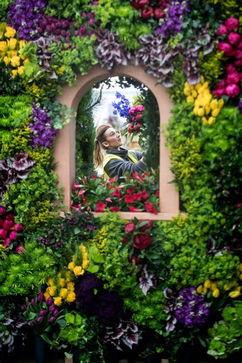 rhs chelsea flower show blooming lovely kerala moments