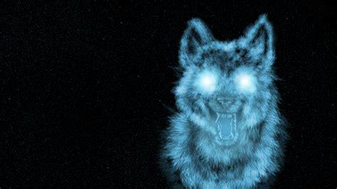 wolf backgrounds wolf backgrounds for desktop wallpapersafari