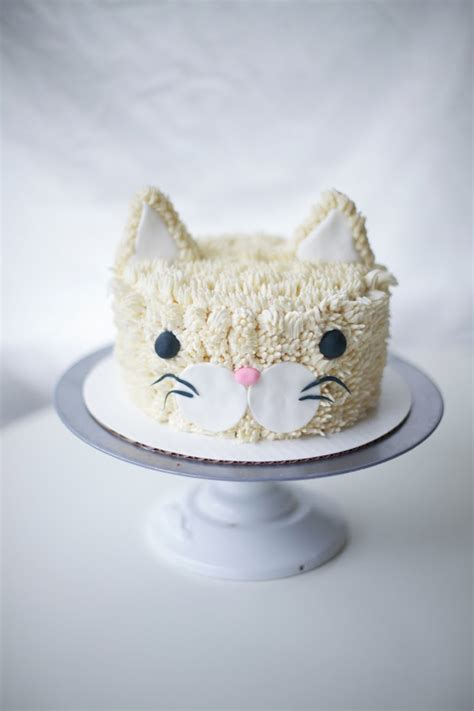 friendly cake coco cake land cakes cupcakes vancouver bc a real cool cat cat cake