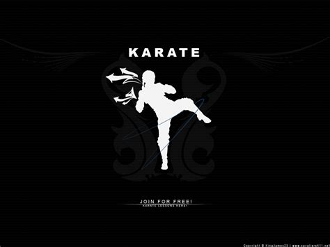 karate background karate wallpapers wallpaper cave