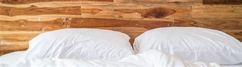 tipps für frauen im bett bettwanzen im hotel tipps gegen ungeziefer im bett