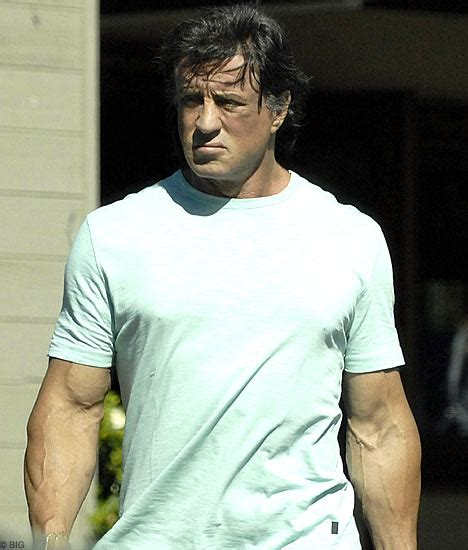 Sly Charged With Importing Steroids by Stallone Admits Charge Of Importing Banned Hormone Drugs