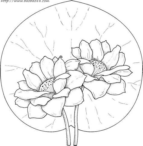 water pipe coloring pages coloring pages 荷花简笔画 17p 植物简笔画 涂色图片