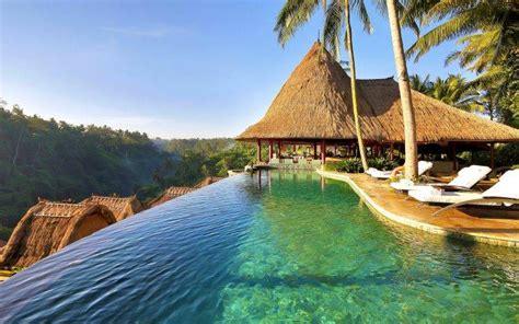 nature landscape swimming pool palm trees resort