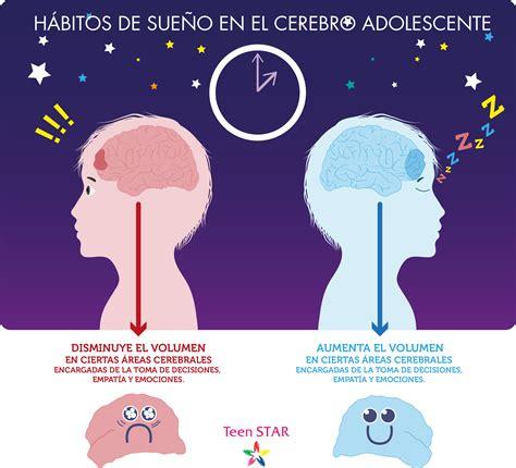 cerebro adolescente teen star h 225 bitos de sue 241 o y cerebro adolescente