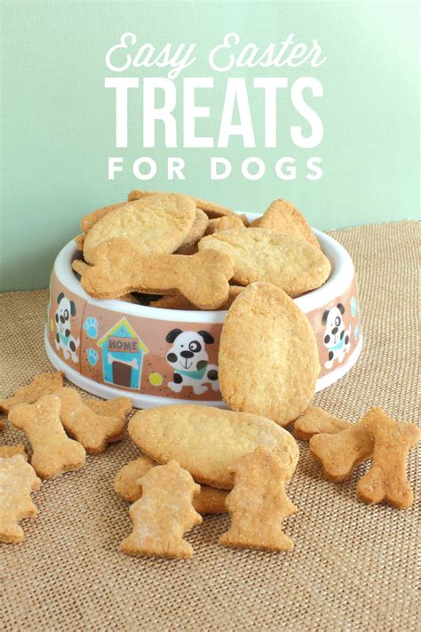 easy easter dog treats recipe for fido s basket