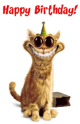 silly happy birthday images all stuff zone birthday wishes for friends on