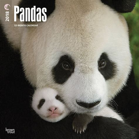 pandas 2018 calendar books 2018 panda calendar pandas international store