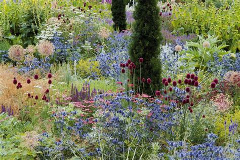Wildflower Backyard by 23 Wildflower Garden For Your Backyard Decorisme