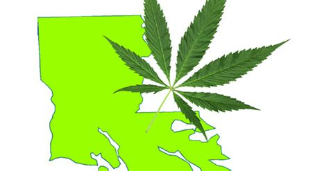 louisiana contacts links and more a medical cannabis louisiana citizens to lawmakers we want medical marijuana
