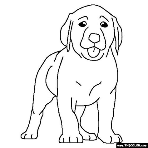 labrador puppy coloring page 49 best images about projects to try on pinterest wayne
