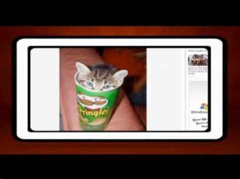 Pringles Australia ca 241 a de pringles australia en redes sociales