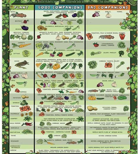 Grande Raised Vegetable Garden Plans Vegetable Raised Vegetable Garden Plans Zone 7