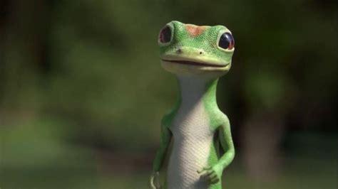 geico insurance gecko geiko related keywords geiko long tail keywords keywordsking
