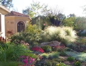 drought tolerant landscape design plant lover s paradise in rancho santa fe