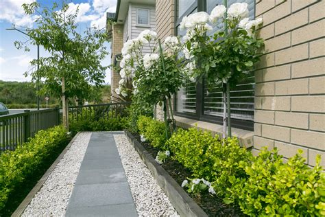 landscape design auckland and bloom