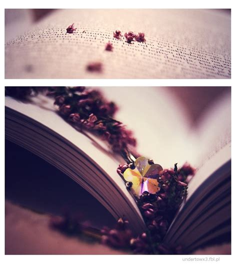 beautiful book pictures beautiful book by aquarell4 on deviantart