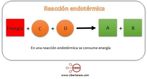 reacciones exotermicas y endotermicas biologia 1 cibertareas reacciones exot 233 rmicas y endot 233 rmicas biolog 237 a 1