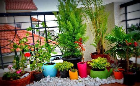vasi per terrazzo vasi terrazzo vasi da giardino modelli vasi