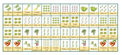 Vegetable Companion Planting Layout Quotes Companion Vegetable Garden Layout