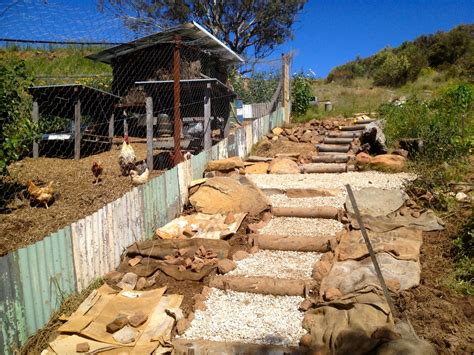 Making diy steps down the side of the forest garden milkwood permaculture courses skills