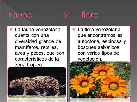 imagenes de venezuela flora y fauna la biodiversidad de venezuela ppt video online descargar