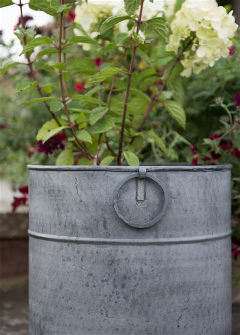 buy a planter buy metal planter