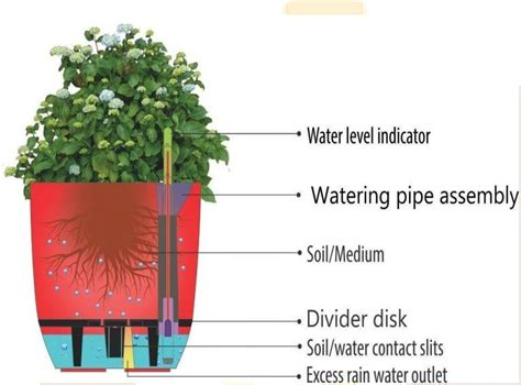 What Is A Self Watering Planter by Self Watering Planter White Greenmylife Anyone Can