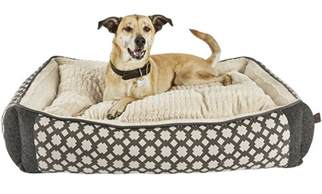 best dog beds review top 6 best orthopedic dog bed reviews for 2017