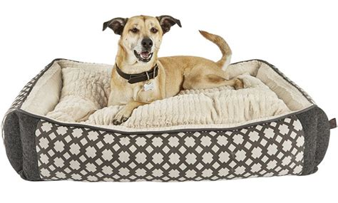 top rated orthopedic dog beds top rated best orthopedic memory foam dog bed for large