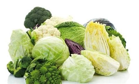 alimenti per velocizzare il metabolismo ecco gli alimenti che accelerano il metabolismo ricette di