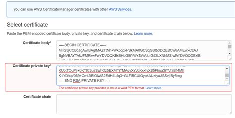 private key certificate newhairstylesformen2014 com aws error importing certificate private key virtual bonzo