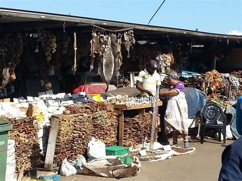 Muthi Top monkey paws at durban s muthi market africa geographic