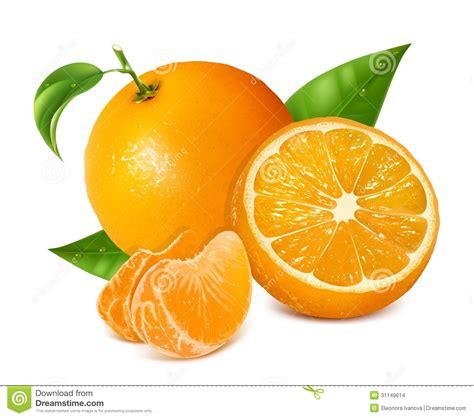 imagenes de naranjas verdes las naranjas frescas dan fruto con las hojas y las