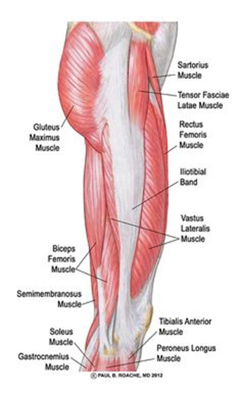 anatoma para vinyasa flow 841505310x anatomia del pie ligamentos buscar con google foot