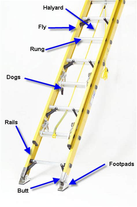 Painting Panneling by Extension Ladder Parts