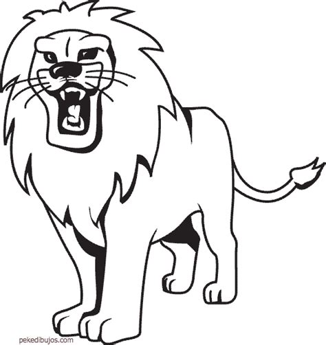 dibujos infantiles leones dibujos de leones para colorear